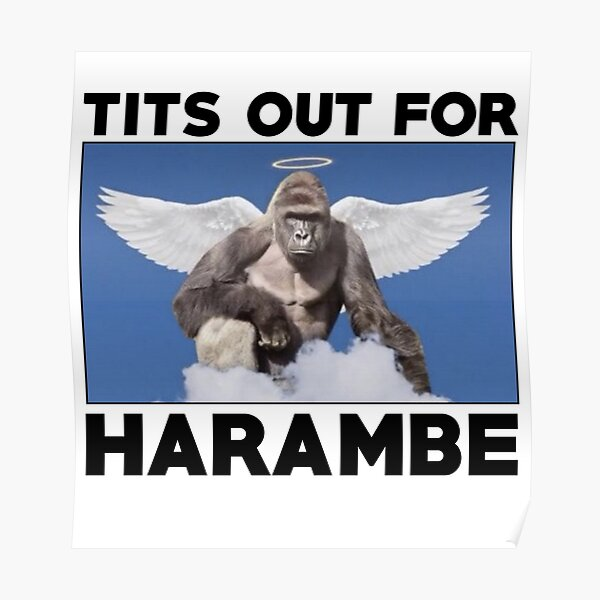 Cocks out for harambe